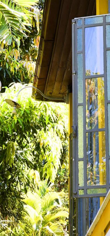 Casa Amarelo - Window on garden
